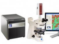 可见光/荧光全景组织体细胞定量分析仪