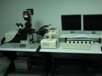 激光扫描共聚焦显微镜 (CLSM)